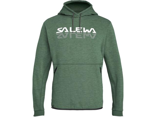 SALEWA Reflection 2 Dry Sudadera Hombre, verde